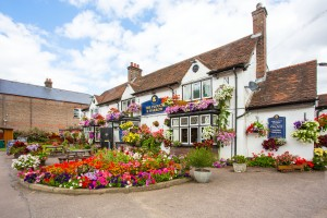 Pub Flowers 2015_2152_edited-2